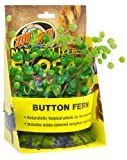 Zoo Med BU-49E Button Fern Kunststoffpflanze zur Dekoration im Terrarium