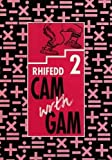 Cam wrth Gam - Rhifedd 2