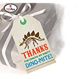 Party Propz Dinosaur Thank You Tag Set Of 12