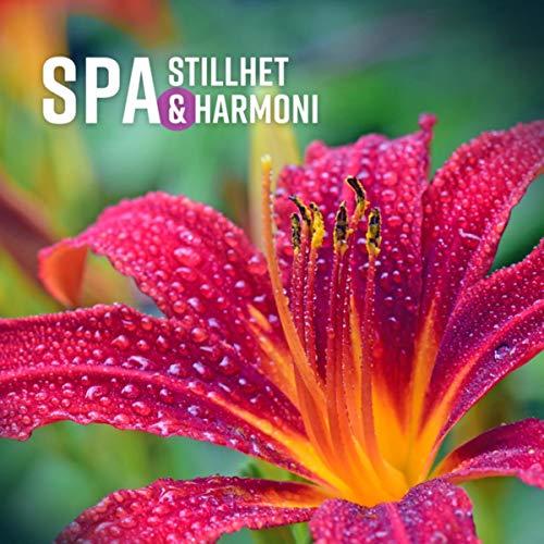 SPA - Stillhet & Harmoni, Koppla av, Stillhet, Omfamnar känslan i att bara vara, Stressfri zon, Lugn och rofylld stämning