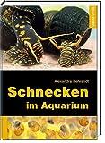 Schnecken im Aquarium - Alexandra Behrendt