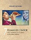 7 Plumas de Cóndor: Siete Enseñanzas en el Camino de los Sabios Andinos