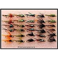 Trout Fliegenfischen Fliegen 30Gold Headed Nymphs Set 33j-10Haken Größe 10