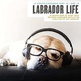 Magnet & Stahl 'Labrador Leben' 2018Kalender
