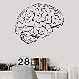 Brain Mind Anatomy Intellect Science Medicine Doctor Vinyl Wall Decal Home Decor Art Mural Wall Stickers Removable 58 * 70cm