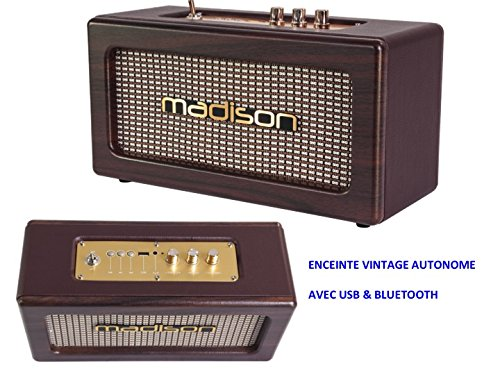 Enceinte Bluetooth RÉTRO Vintage Autonome avec Batterie USB & Bluetooth 2 X 10W TRÈS Beau Style IDÉE Cadeau RÉGLAGE des AIGUS ET Graves