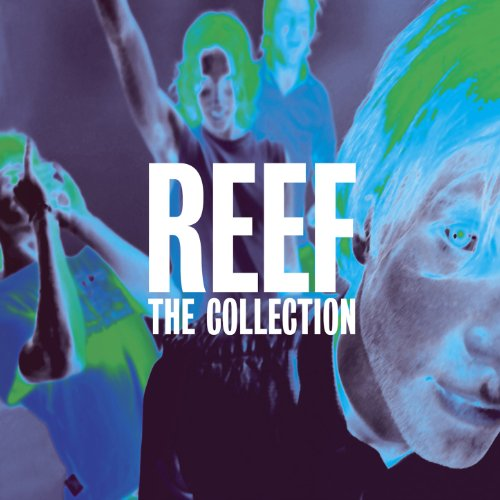 reef-the-collection
