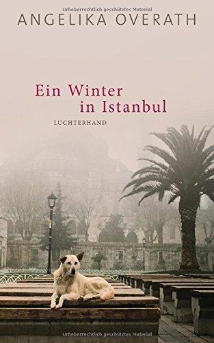Ein Winter in Istanbul: Roman