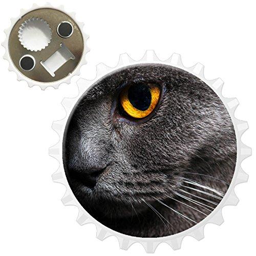 Fancy A Snuggle Nahaufnahme von grauen Katzen gelbes Auge Kühlschrankmagnet mit Flaschenöffner