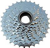 DNP Epoch Freewheel 9spd 11-32 Nickel Plated by DNP