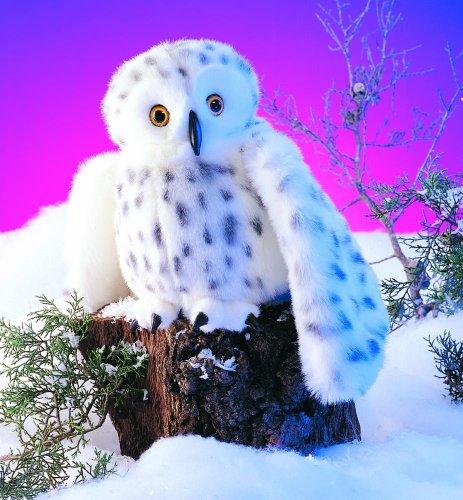 Schnee-Eule (Eule, Puppe)