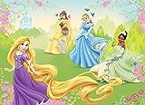 Olimpia Design Fototapete Disney Princesses, 1 Stück, 4-017P4