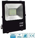 Plera Le Foco LED 50W Para Exterior/Interior Iluminación Decoración 6500k IP65 Negro