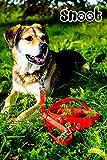Schleppleine 5m – Neon-Orange – zugfeste, schmutz- und wasserabweisende Hundeleine mit zwei Karabinern - 6