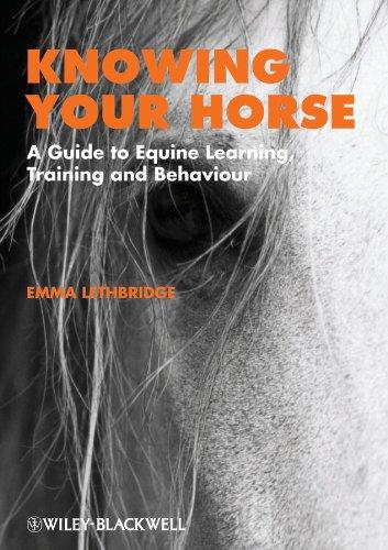 Knowing Horse por Lethbridge