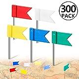 PAMIYO 300 Stück Markierungsfähnchen Markierungsnadeln in 5 Farben für Weltkarten Pinnwänden Fähnchen Kennzeichnung Reiseziele - Rot Gelb Blau Grün Weiß