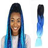 WIGENIUS Jumbo Braids 100% Kanekalon Fiber Braiding Hair Ombre Color 24