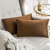 MIULEE 2er Set SAMT Kissenbezug Kissenhülle Dekorative Dekokissen mit Verstecktem Reißverschluss Sofa Schlafzimmer Auto 12x 20 Inch 30 x 50 cm Schokoladenbraun