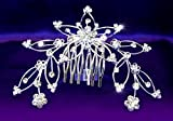 Exquisite Crystal Rhinestone Flower Tiara Comb
