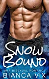 Snow Bound: MMF Bisexual Romance