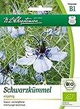 Bio Schwarzkümmel Saatgut Samen (Gewürz- und Heilpflanze)