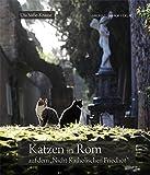 Katzen in Rom: auf dem ?Nicht-Katholischen Friedhof?