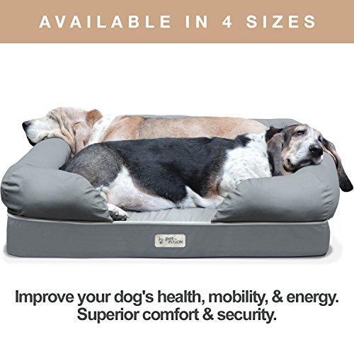 PetFusion Memory Foam Hundebett für mittlere und große Hunde, Grau