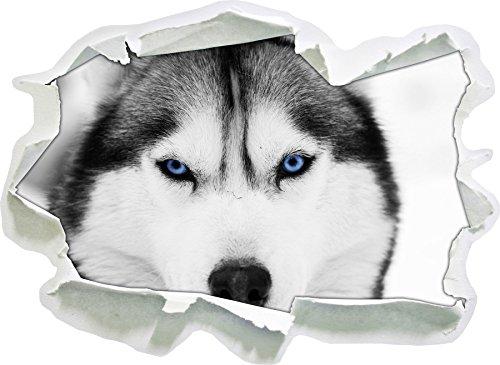 Husky con dimensioni adesivo occhi blu nero / bianco, carta da parati 3D: 92x67 cm decorazione della parete 3D Wall Stickers parete decalcomanie