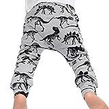 Famille Bébé Garçon Pantalons Longs à l'impression de Dinosaures, Lovely Pantalons pour Enfants (2-3Ans, Gris)