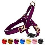 DOGNESS Reflektierende Hundegeschirr No-Pull Hundegeschirr mit Handschlaufe, Verstellbar Weich Luftdurchlässig Geschirr Neopren-Polsterung, Hoher Tragekomfort,für kleine mittlere große Hunde