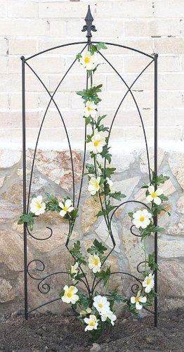 DanDiBo Clôture Gotha Support pour plantes grimpantes Treillis en métal H-145cm L-50cm Support pour plantes grimpantes Clôture
