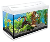 Tetra AquaArt Discovery Line Aquarium-Komplett-Set weiß (inklusive Tetra EasyCrystal FilterBox, ideal für die Haltung von Garnelen, Krebse oder tropischen Zierfische), 60 L, weiß