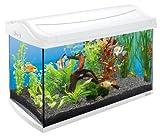 Tetra AquaArt Discovery Line Aquarium-Komplett-Set weiß