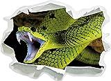 Giftige grüne Schlange, Papier 3D-Wandsticker Format: 62x45 cm Wanddekoration 3D-Wandaufkleber Wandtattoo