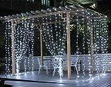 Salcar 3 * 3 Meter 300 LED Lichterkette Lichtervorhang für Weihnachten Deko Party Festen, Innen, 8 Lichtwechselprogramme (Weiß)