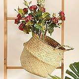 Seegras-Weidenkorb Blumen-Topf-faltender Korb-schmutziger Korb- Klappbarer Blumentopf faltender Korb schmutziger Speicher Ausgangsdekoration Gewebt faltender Speicher