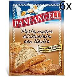 6x Paneangeli Pasta madre Mutter Pasta mit Hefe dehydriert für Brot bread 30g