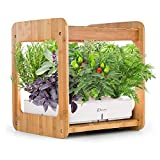 Smart Indoor Gardening System with LED Plant Grow Light, Nature Bamboo Frame, Mini Indoor Herb Garden with 12 Plants Pod Kit and Nutrients, Hydroponics Growing Kit, Soil-Free Plantation
