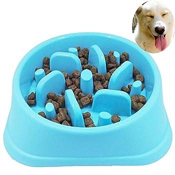 Écuelle pour chien interactive et ludique avec dispense alimentaire lente Sankill