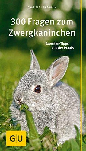 Kaninchen B 252 Cher Tipps Zum Halten Eines Kaninchens Ratgeber border=