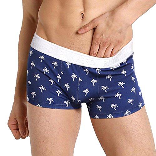 Unterhosen Herren,Binggong Mens Blue Ocean Boxer Unterhose Elegant Slips Hot Shorts Soft Unterwäsche Bequeme Nachtwäsche Reizvolle Pants Hose (Marine, M) (12 Boxer Briefs Mens)