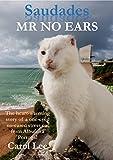 Saudades MR NO EARS