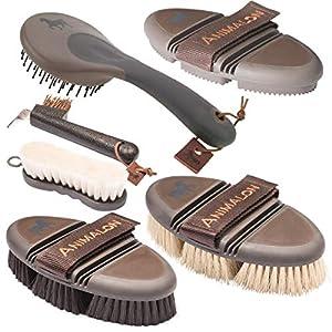 Animalon Basis-Set | Kardätsche, Striegel, Wurzelbürste, Schweif- & Mähnenbürste & Hufbürste | Basis-Ausrüstung für die…