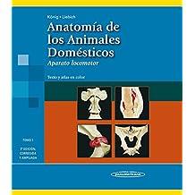 König. Anatomía de los Animales Domésticos.Texto y atlas en Color 1; 2