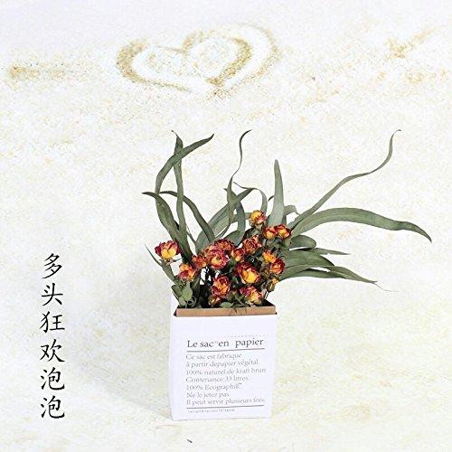 me ins Schreibtisch Wohnzimmer Schlafzimmer Home Decoration natürliche Blume kleine, Frische, Karneval + Papier Beutel + Willow leaf Set (Karneval Kleine Wand Dekorationen)