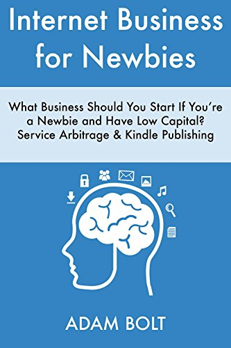 internet-business-for-newbies-what-business-should-you-start-if-youre-a-newbie-and-have-low-capital-
