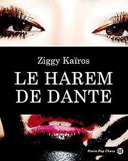 Le harem de Dante (French Edition) by [Kaïros, Ziggy]