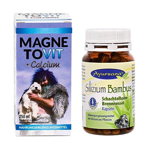 Robert Franz Magnetovit (250 ml) und Ayursana Silizium-Kapseln (120 Stück)