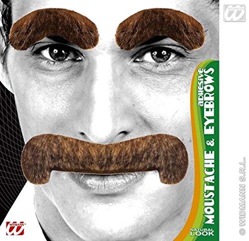 Grauer Schnautzer oder Walross Bart mit (Walross Bart)