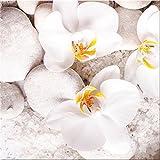 artissimo, Glasbild, 30x30cm, AG2072A, White Sence II, Weiße Orchideen mit Steinen, Bild aus Glas, Moderne Wanddekoration aus Glas, Wandbild Wohnzimmer Modern